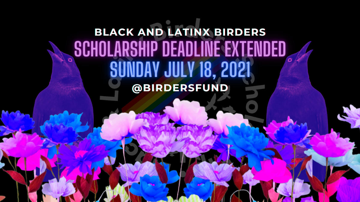 Scholarship deadline extension July 18. Two birds on either side of text grouped in with flowers against a black backdrop.